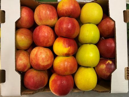 Gemischte Apfel Kiste 5 kg