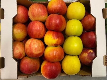Äpfel Gemischiste Kiste 5 kg